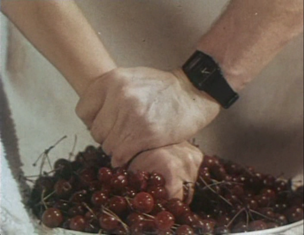 "I am amazed how savvy were the creators of the film: when the heroine (who we know to be a virgin) gets raped, her hand reaches out to the bowl of cherries and squeezes them, which is a visual metaphor obviously having its roots in an English slang phrase ""to pop a cherry""."