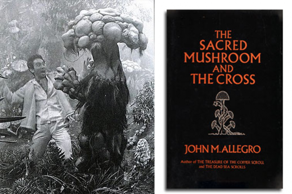 Possible influences: a production still from Matango and Allegro's book cover